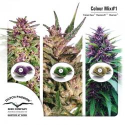 Colour Mix #1