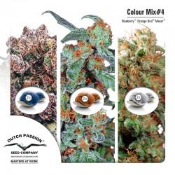Colour Mix #4