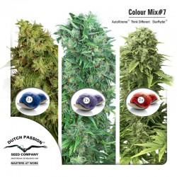 Colour Mix #7