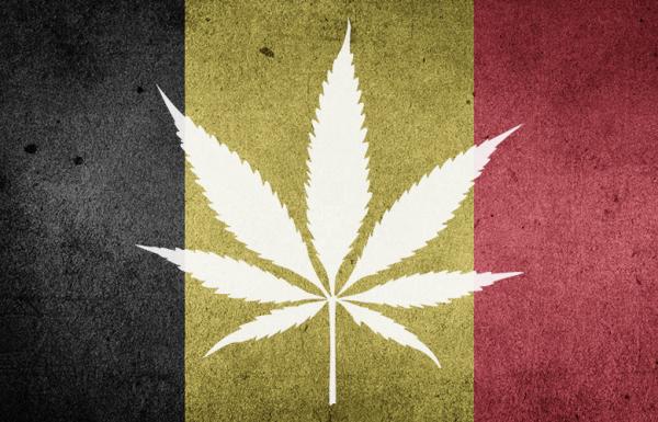 Belgique : Le plat pays s'apprête à légaliser le cannabis médical
