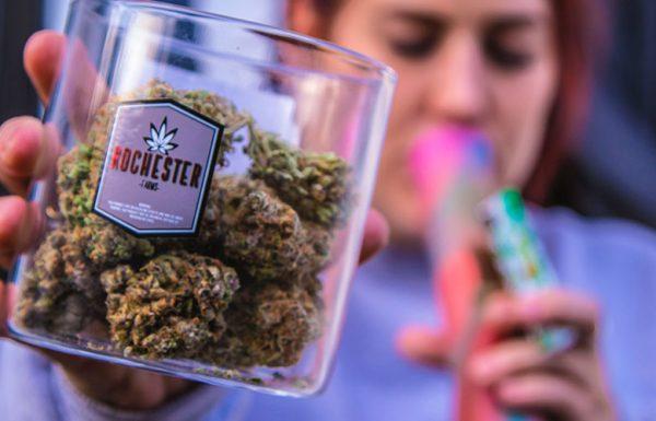 La consommation canadienne de cannabis en 2015 s'est élevée à plus de 5 milliards de dollars