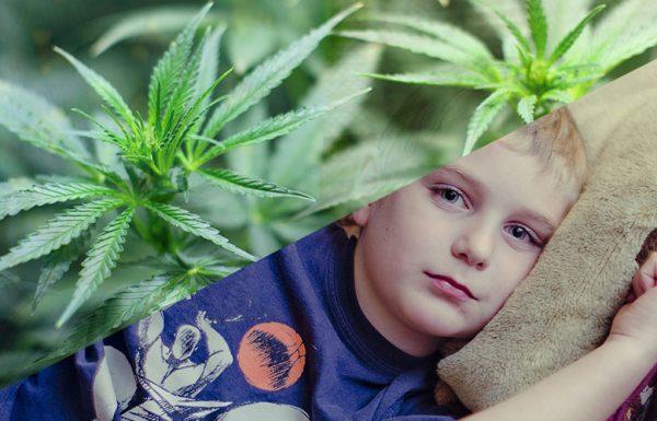 Étude: Le cannabis médical aide les enfants souffrant de nausées liées à la chimiothérapie