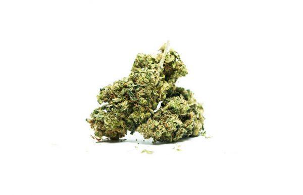 Canada: Le gouvernement propose une taxe sur le cannabis de 1 $ par gramme