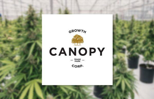 Canada: les boissons infusées au cannabis en pleine essor