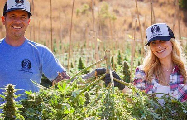 Californië: minister van Landbouw beperkt de teeltgebieden voor cannabis.
