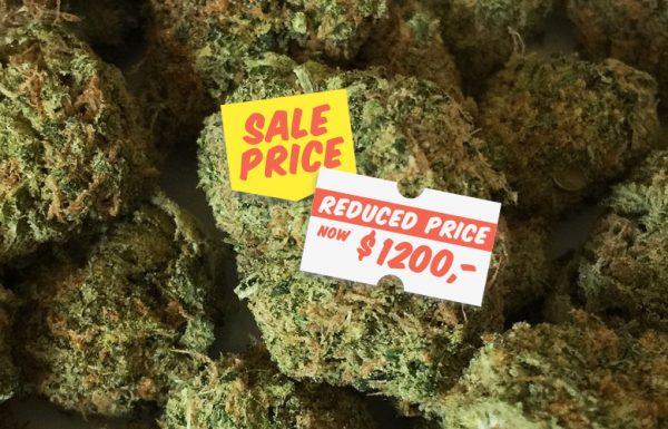 Au Colorado, le prix du cannabis a baissé de 25%
