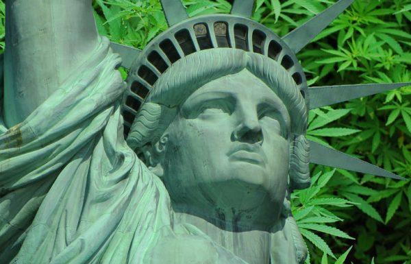 La livraison de cannabis médical arrive à New York