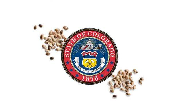 Colorado: premier Etat américain à certifier des graines de chanvre