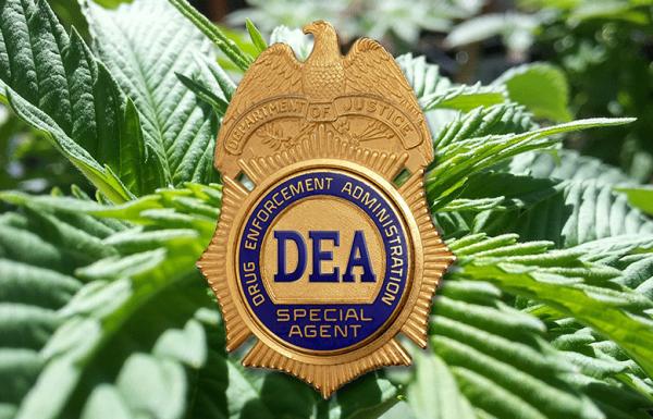 La DEA vient-elle d'interdire le CBD ?