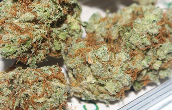Étude: Fumer du cannabis réduit votre risque d'accident vasculaire cérébral