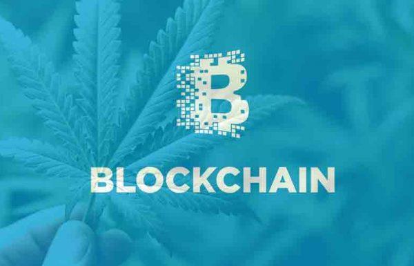 IBM présente la technologie Blockchain en Colombie-Britannique pour le suivi légal du cannabis