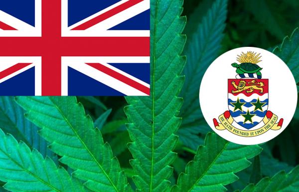 Les Iles Caïmans autorisent l'usage médical du cannabis
