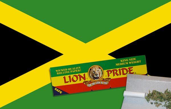 La Jamaïque prépare son tourisme cannabique