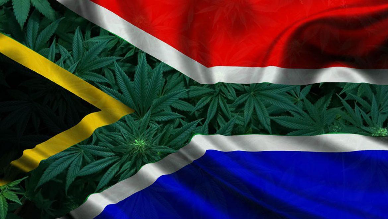 L'Afrique du Sud émet un projet de règlement pour le programme de cannabis médical