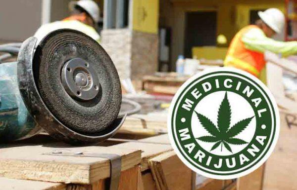 Les employés sont moins absents dans les pays où le cannabis médical est autorisé