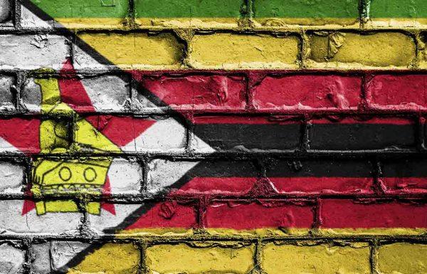 Zimbabwe: la nation considère la légalisation du cannabis médical comme un tremplin économique