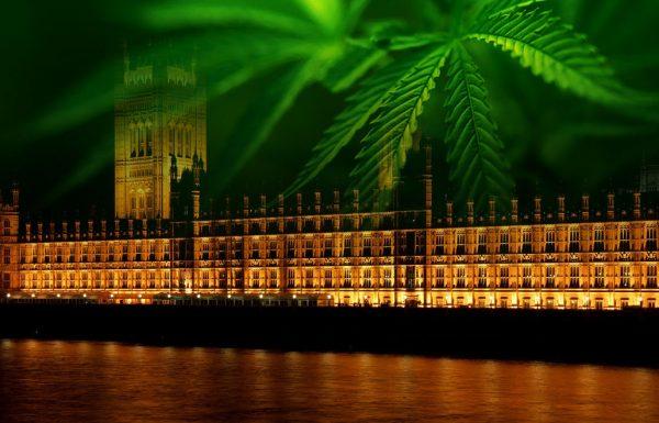 Un député britannique appelle à la désobéissance civile en faveur du cannabis