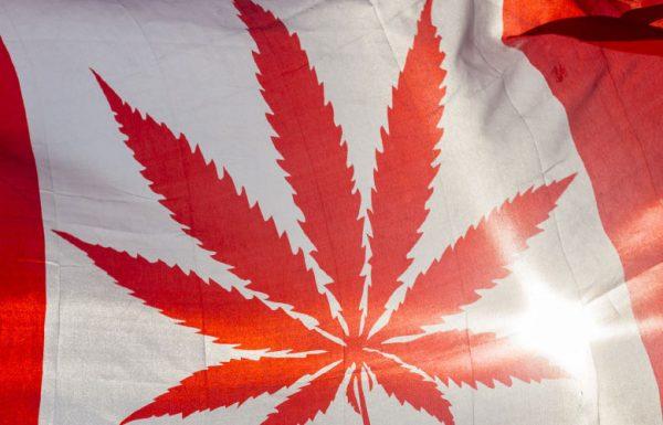 Canada: le plan de légalisation du cannabis dévoilé