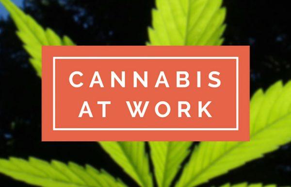 Canada: lancement du Pôle Emploi du cannabis.