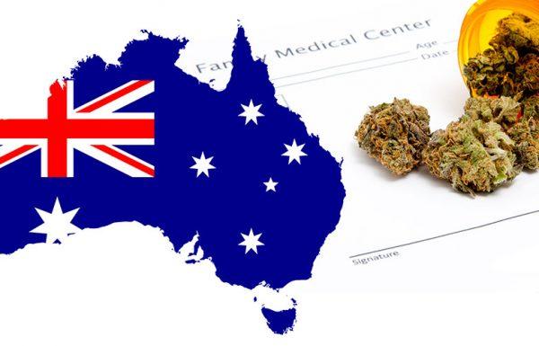 Australie: les entreprises se réjouissent par rapport au plan fédéral d'importation de cannabis médical