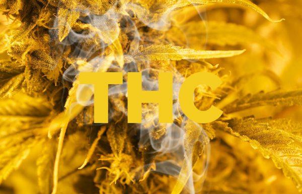 Ohio: l'industrie médicale propose de réglementer le cannabis en fonction de sa teneur en THC