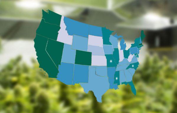 Le chroniqueur John Oliver se joue de l'incohérence des lois sur la marijuana