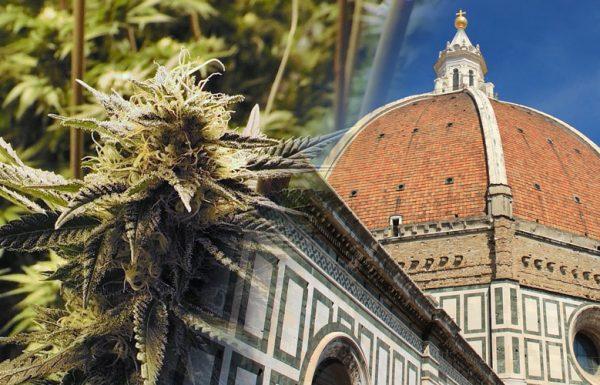 Italie: la culture de cannabis portée par l'armée