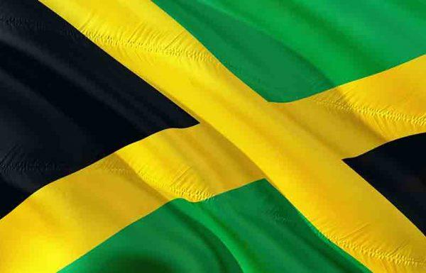 La Jamaïque autorise un premier cultivateur et producteur de cannabis médical