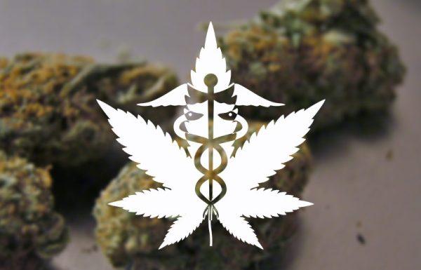 Etude : un nouvel exemple de patients qui remplacent les médicaments par le cannabis thérapeutique