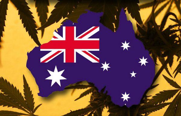 Les Australiens soutiennent la légalisation du cannabis