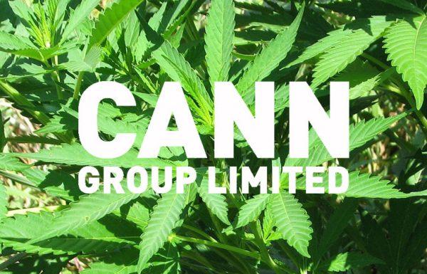 Australie: le pays délivre sa première licence de culture de cannabis