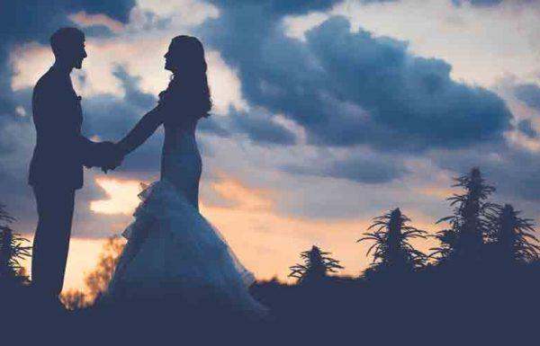 Le business des mariages au cannabis