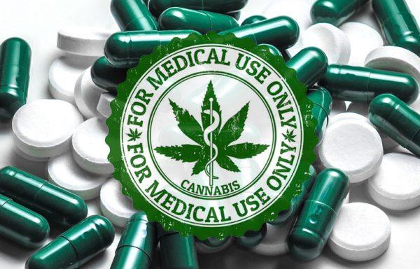 Canada: hausse de 32% de prescription de cannabis médical