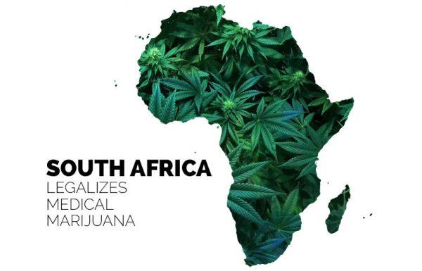 L'Afrique du Sud légalise le cannabis médical