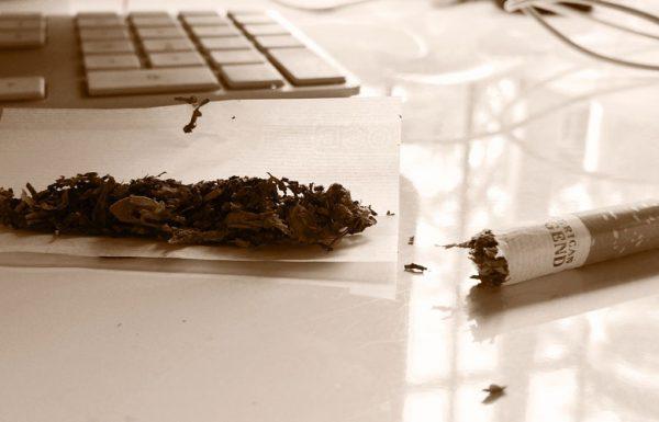 Canada : 39% des consommateurs deviendront des usagers de cannabis récréatif